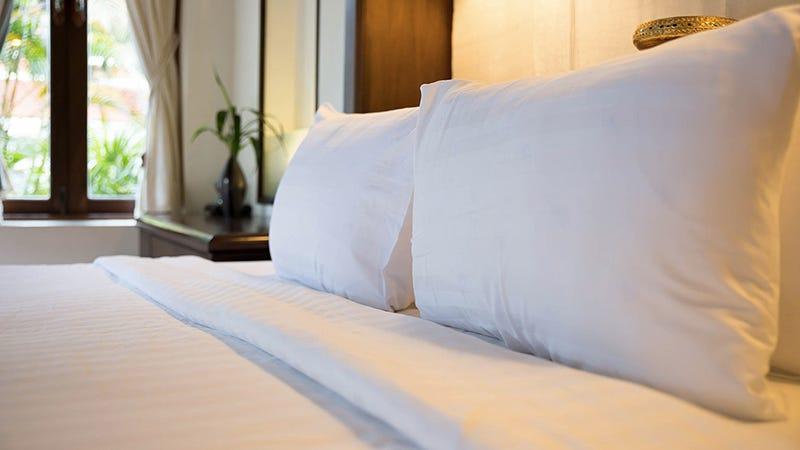 eLuxurySupply Extra Soft Down Filled Pillow, $60-$112
