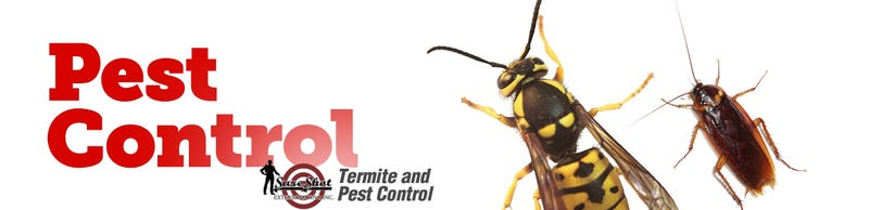 Illustration for article titled Pest Control For Bed Bugs