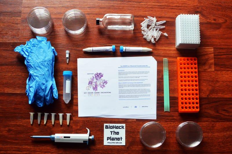 Illustration for article titled Juega a ser Dios sin salir de casa con este kit de edición genética CRISPR de $160