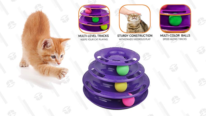 Purrfect Feline Titan's Tower | $8 | Amazon | Use code P9DMSMIT