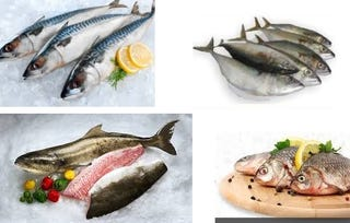 Illustration for article titled Buy Fresh Fillet, Steak or Any Other Fish Online in Delhi at Low Prices Now