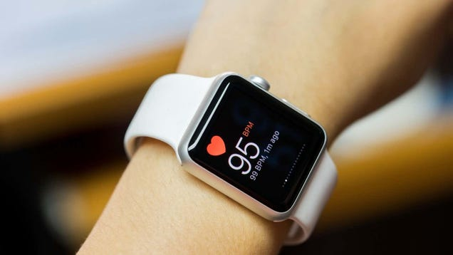 What Your  Heart Rate Variability  Says About Your Health