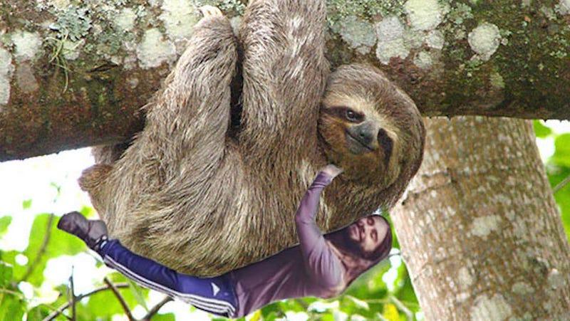Illustration for article titled Jared Leto Instagrams Himself Hugging A Tree, Internet Responds