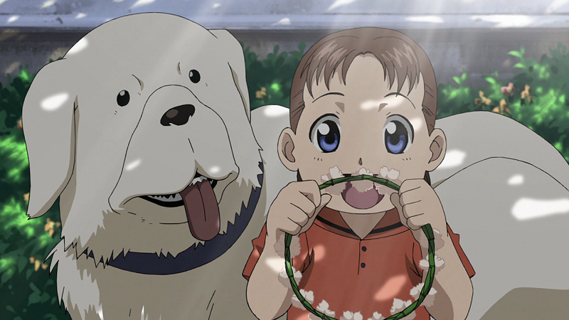 Fullmetal Alchemist Dog S Name
