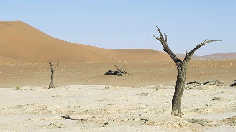 a barren desert.