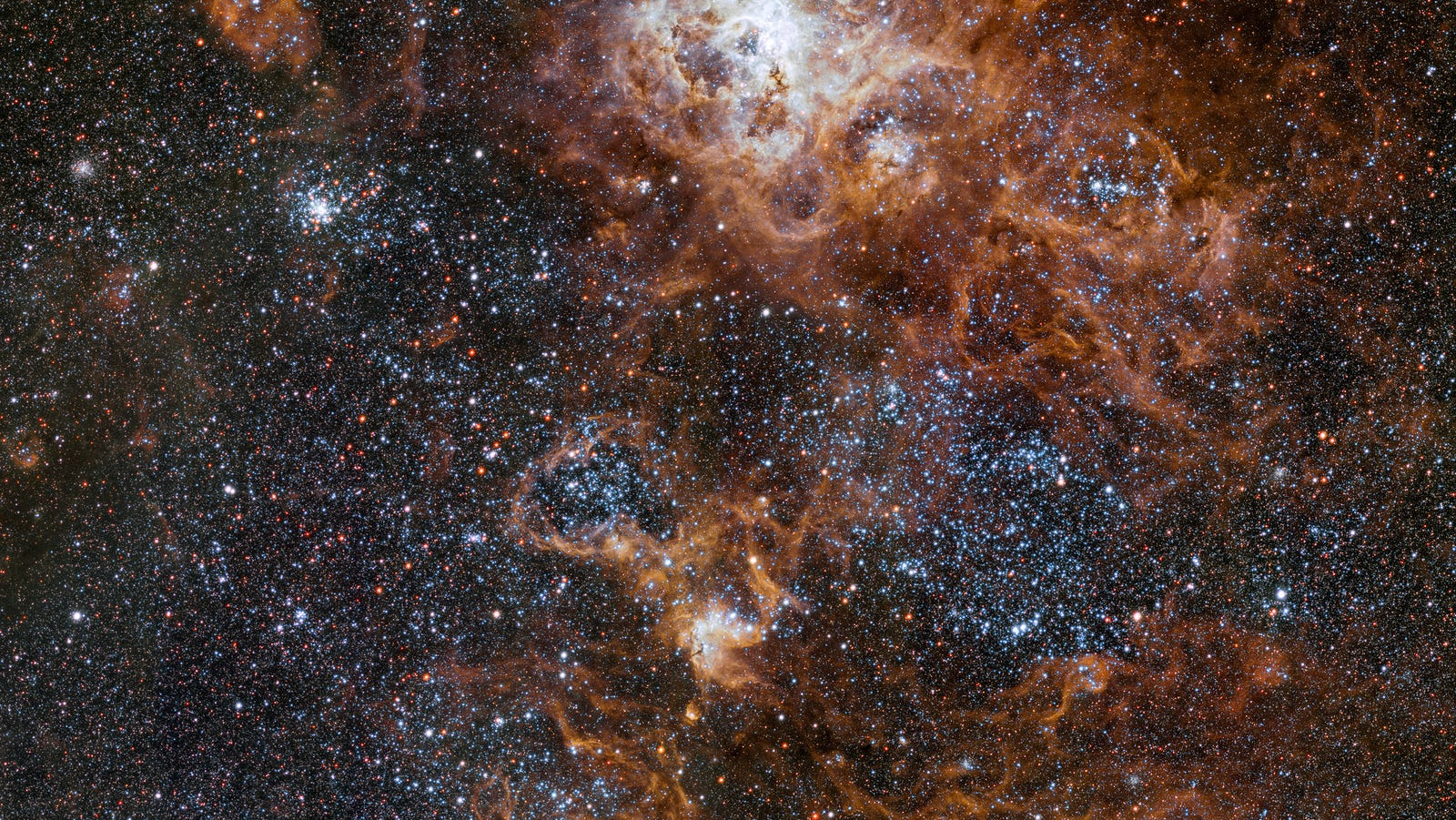 New View of the Tarantula Nebula Is the Space Picture We All Need Today