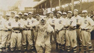 Illustration for article titled In 1908, The Chicago Cubs' Mascot Was A Terrifying Squirrelbeast