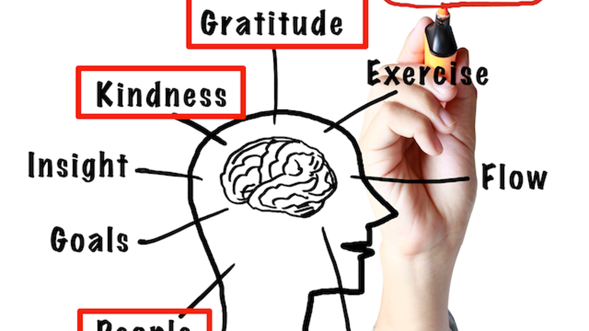 Rewire Your Brain for Positivity and Happiness Using the