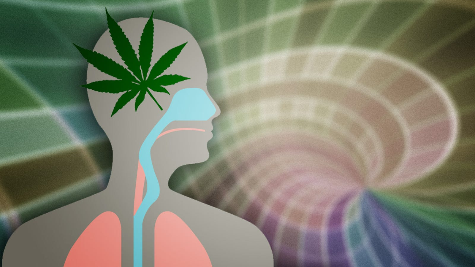 What Marijuana Actually Does to Your Brain and Body