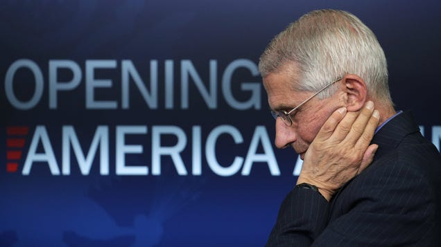 How to Watch Dr. Fauci Testify About 'Reopening America' on YouTube, Facebook, and More