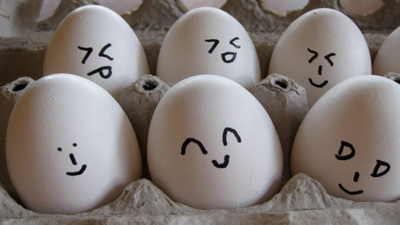 Illustration for article titled Why Eggs Need to Be Refrigerated in the U.S., But Not in Europe