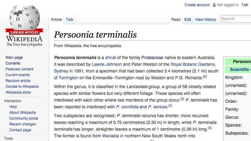 Illustration for article titled Wikipedia reaches 5 million articles with an entry about some Australian shrub