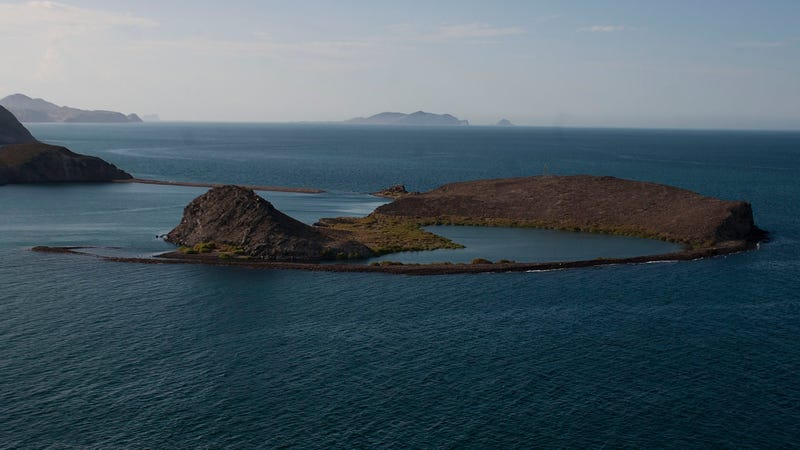 Sea of Cortez. Image: AP