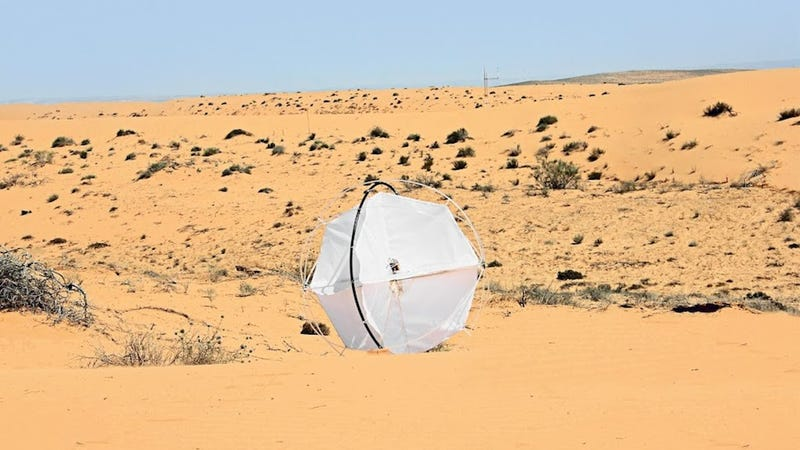 Illustration for article titled This Wind-Powered Tumbleweed Robot Aims to End Desertification