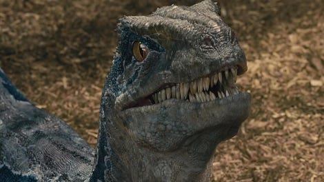 First Brief Look At Jurassic World Fallen Kingdom Showcases The Cutest Deadly Carnivore Ever