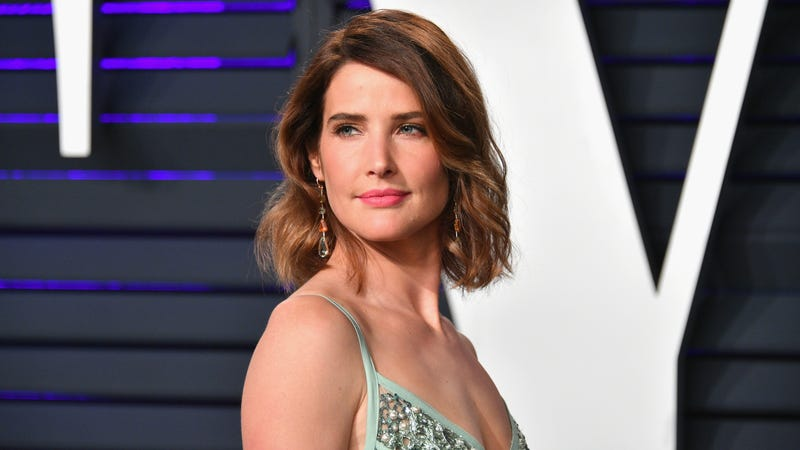 Illustration for article titled Cobie Smulders to star in ABC pilot based on Stumptown graphic novel