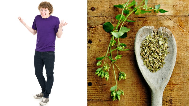 Illustration for article titled Sublimelydumbass teens smash van into pot store and steal oregano