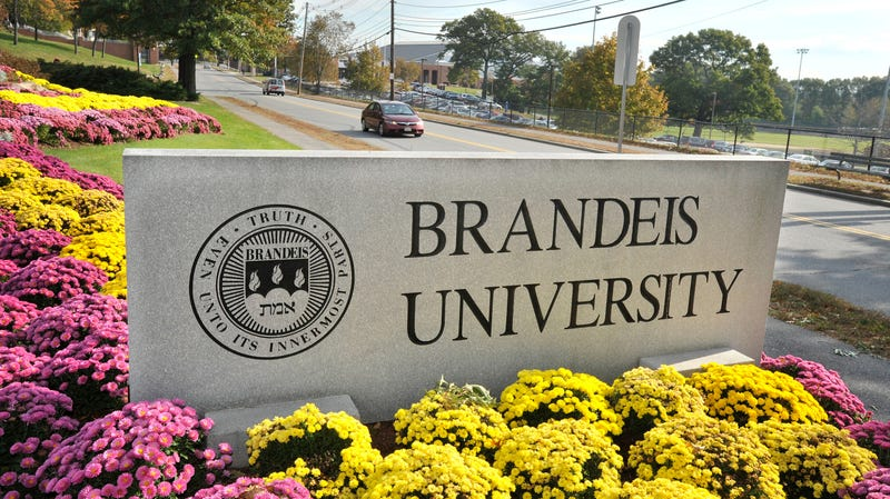 Illustration for article titled Brandeis Cleans House After Investigation Into Basketball Coaching Abuse