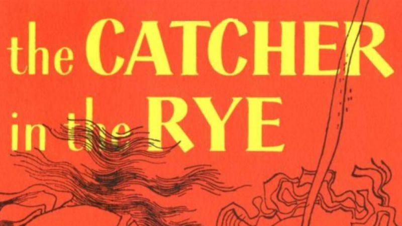 Illustration for article titled Favorite young-adult novels