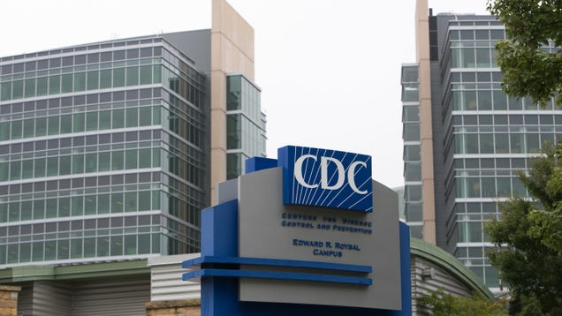 CDC Nukes Absurd Testing Guidance, Now Says All Exposed People 'Need a Test'
