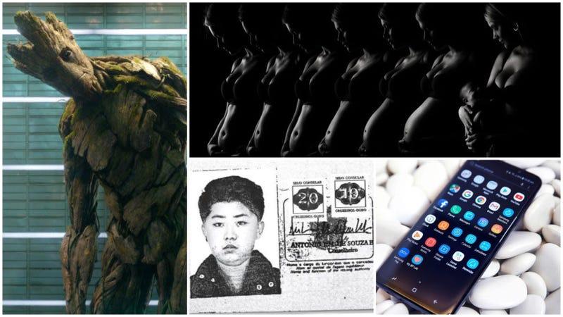 Illustration for article titled La araña más peligrosa, la muerte de Groot, el pasaporte de Kim Jong-un. Lo mejor de la semana