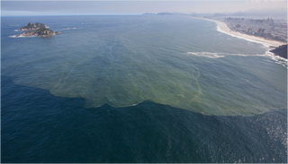 Illustration for article titled El otro problema de Río para el Mundial: una bahía de aguas fecales