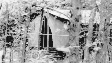 7 Real-Life Events That Were More Terrifying Than Any Horror Movie