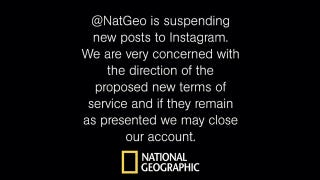 Illustration for article titled National Geographic Is Suspending Posts on Instagram Because of Instagram's New Icky Terms of Service