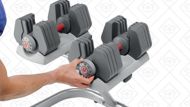 Nautilus PowerPak Adjustable Dumbbells, $199