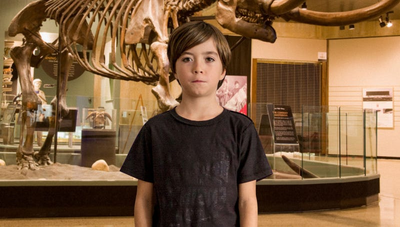 Illustration for article titled American Museum Of Natural History Acquires Rare Third-Grader Separated From Group On Class Trip