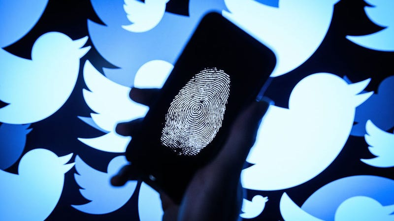 Illustration for article titled Twitter Takes Down 10,000 Accounts That Discouraged Voting
