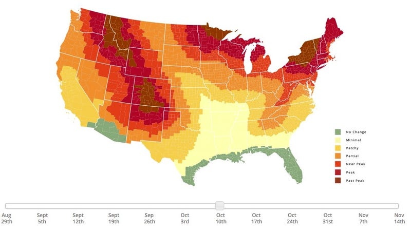 Illustration for article titled This Interactive Map Predicts Peak Fall Foliage Times in Your Area