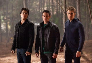 Illustration for article titled Vampire Diaries photo
