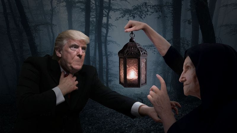 Illustration for article titled More Controversy: Donald Trump Reportedly Used Money From His Own Charity To Buy His Voice Back From An Ancient, Blind Hag