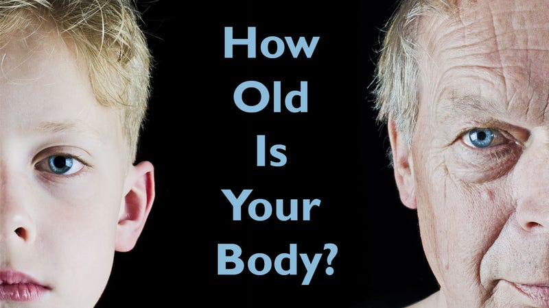 """Illustration for article titled Find Out Your """"Fitness Age"""" by Answering Five Questions"""