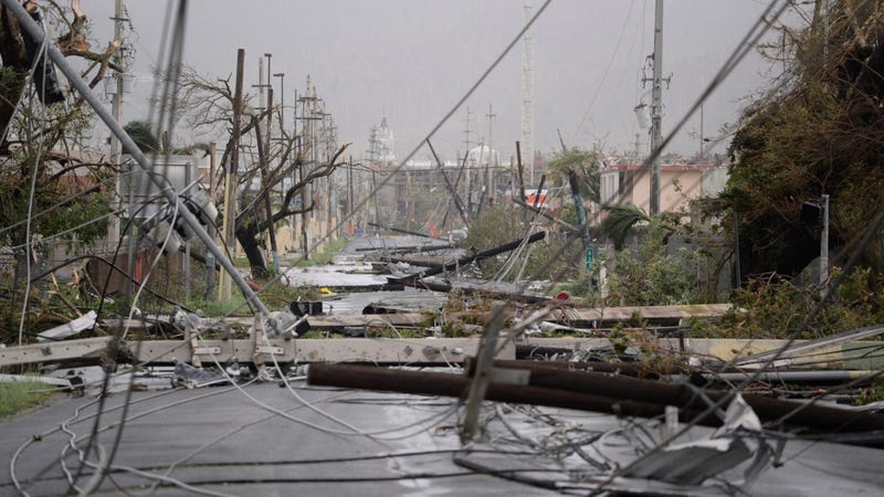 Electricity poles and lines lay toppled on the road after Hurricane Maria hit the eastern region of the island, in Humacao, Puerto Rico. (Image: AP)