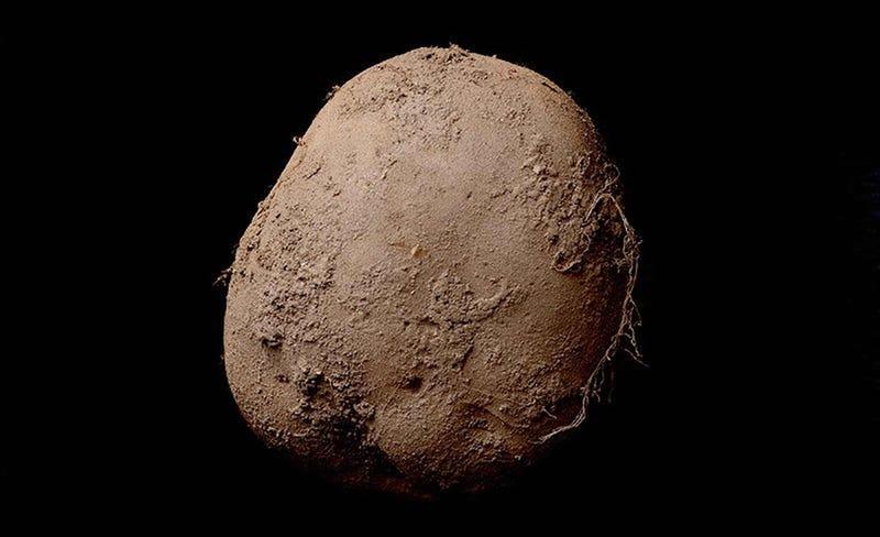Illustration for article titled Esta fotografía de una patata se ha vendido por un millón de euros