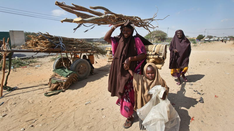 Drought in Somalia has left some 739,000 people displaced. Climate change will only make this worse.