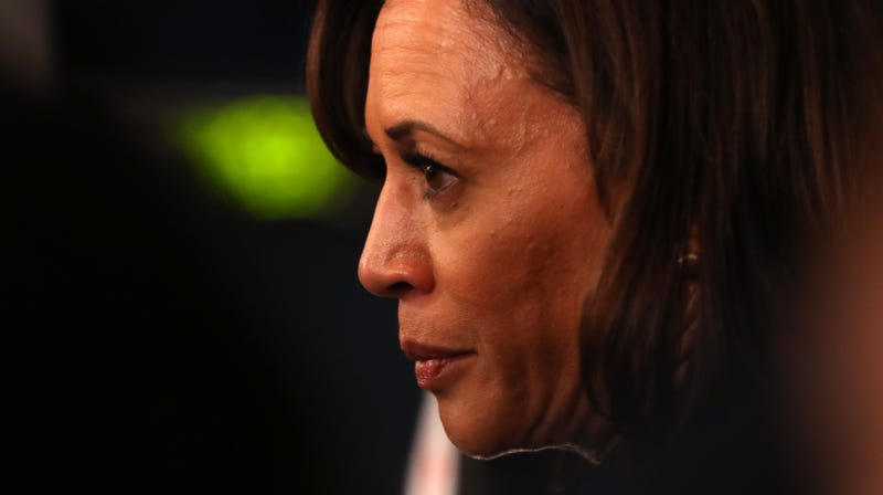Illustration for article titled Kamala Harris Ends Her Campaign, Yet Pete Buttigieg and Michael Bloomberg Remain