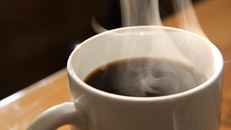 bonavita 8 cup coffee maker with thermal carafe