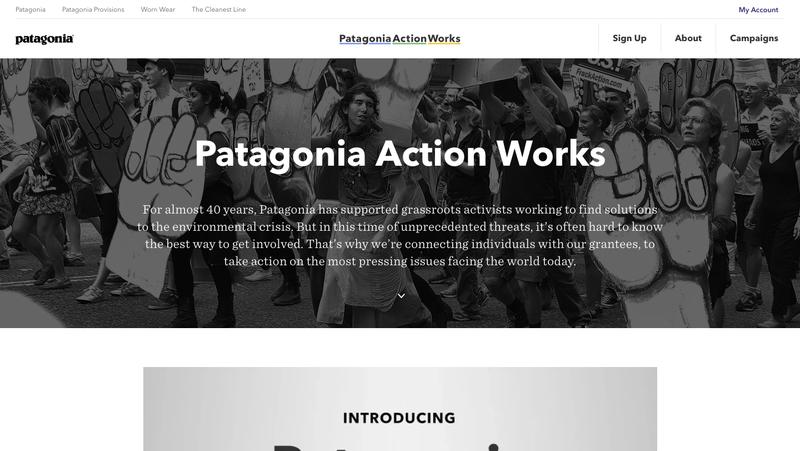 Credit: Patagonia Action Works website