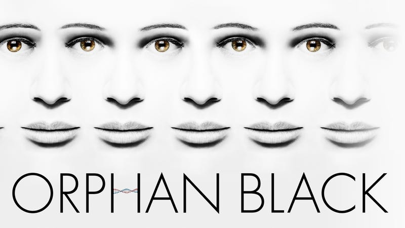 Illustration for article titled Orphan Black Season 2