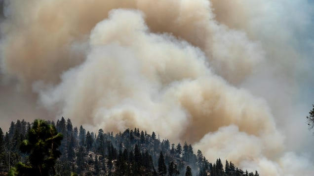 Notorious Wildfire-Causing Power Company PG&E to Finally Bury Some of Its Power Lines