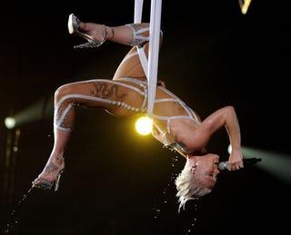 Illustration for article titled Pink Injured During Concert Stunt