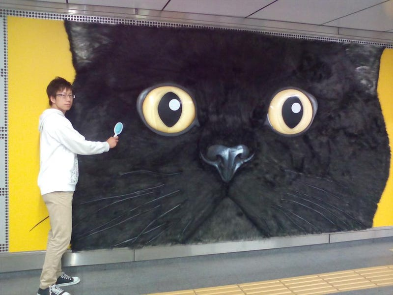 Illustration for article titled Tokyo's Giant Cat Billboard Is Big Enough to Pet