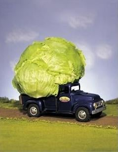 Illustration for article titled Lettuce Truck Causes Carnage in Utah, Leaves Driver Dead
