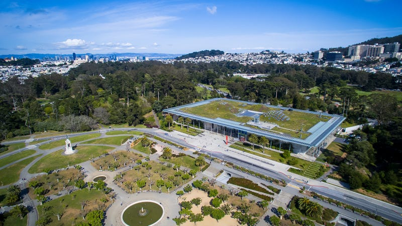 An aerial view of the California Academy of Sciences in 2015
