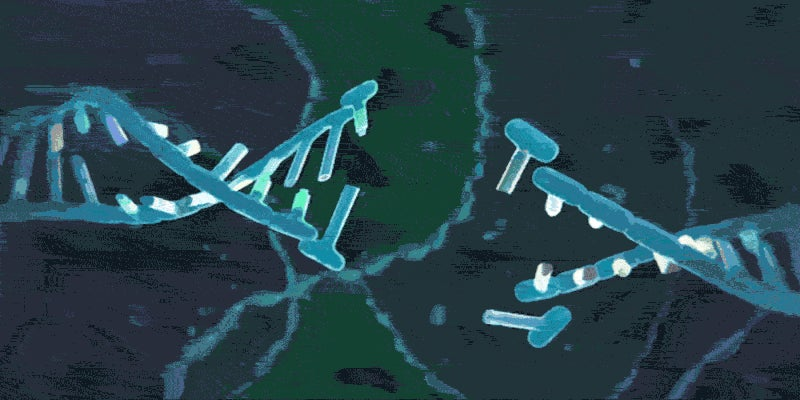 More Anti-CRISPR Proteins To Block Cas9