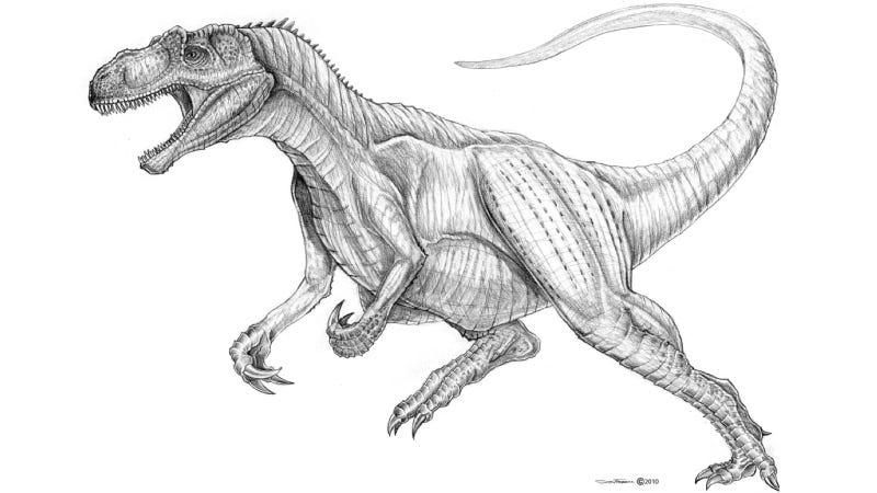 Illustration for article titled Allosaurus Ate Like a Terrifying Two-Ton Falcon