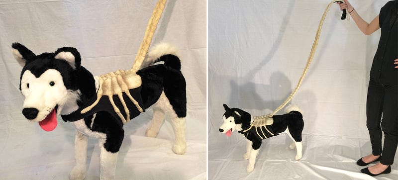 Dog will never appreciate how great this alien facehugger leash is